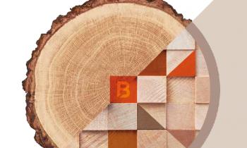 EUROBOIS 2020 : Le salon du bois à Lyon